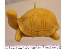Teknősbéka gyertya